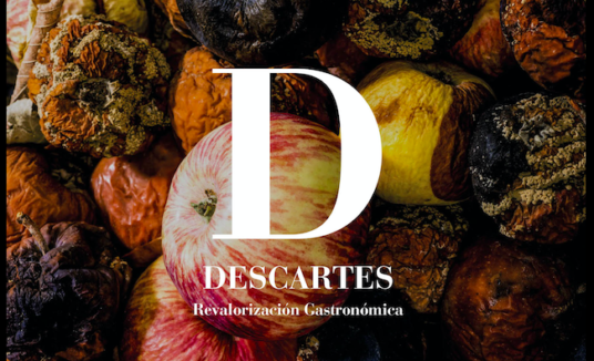 Manual para la revalorización de descartes